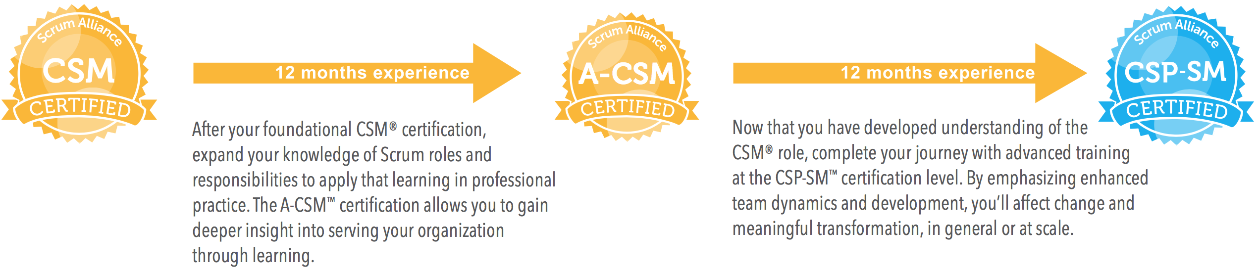 Path To Certified Scrum Professional Csp Sm For Scrummaster